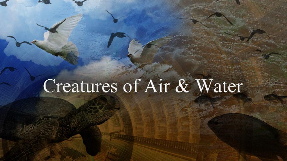 Creatures of Air and Water