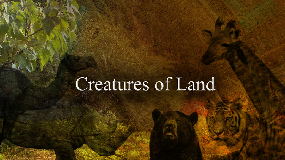 Creatures of Land